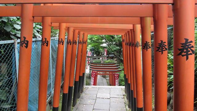 Puertas Torii en Parque Ueno, Tokio, Japón