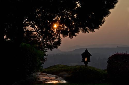 sunrise smoke forestfires