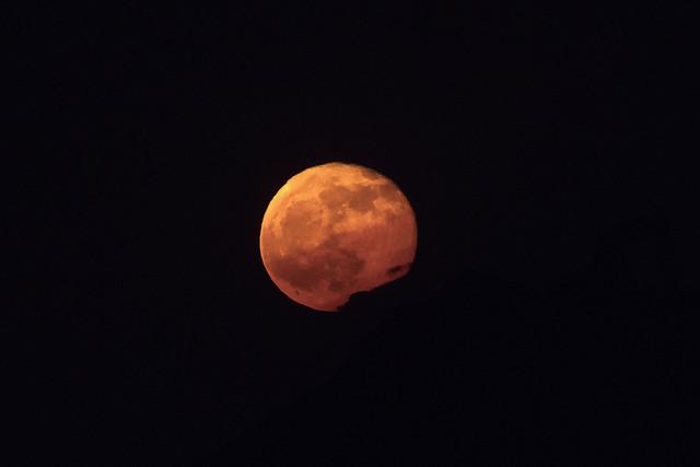 Moonrise In Rocklin 0068