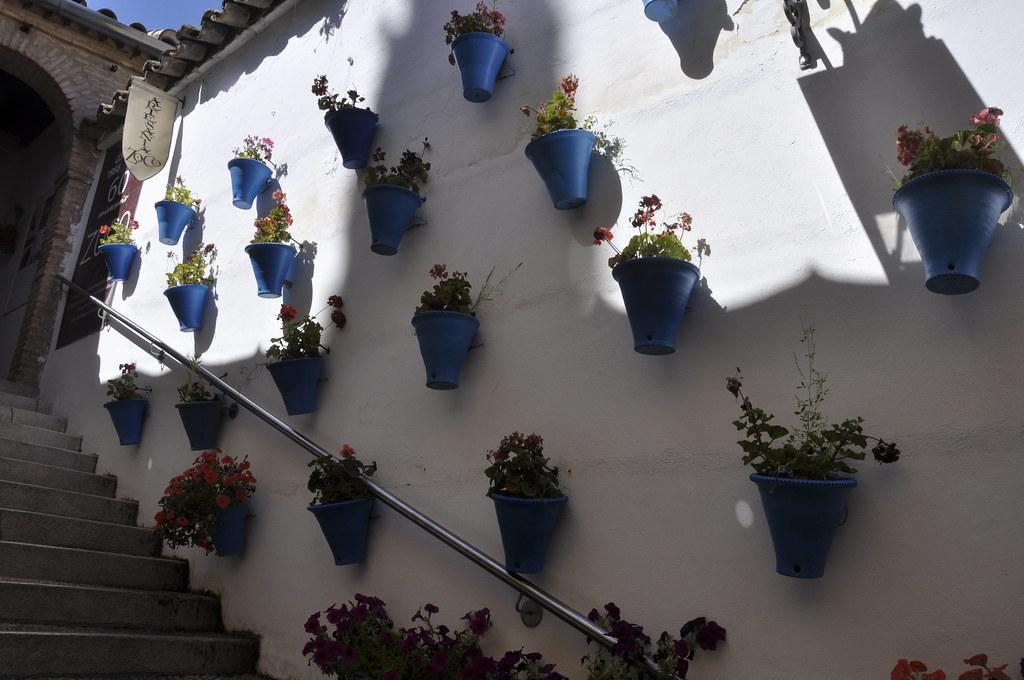 zoco-córdoba-spain
