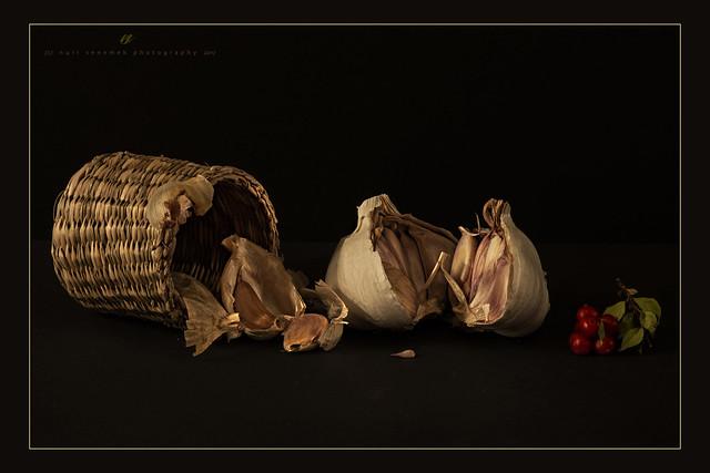 a humble tribute to garlic