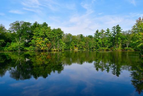 pond reflection lake water trees foliage flora autumn leaves scenic chancyrendezvous davelawler blurgasm lawler