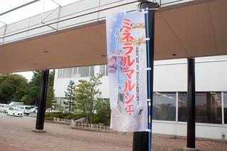 第5回新潟ミネラルマルシェ | by icoro.photos