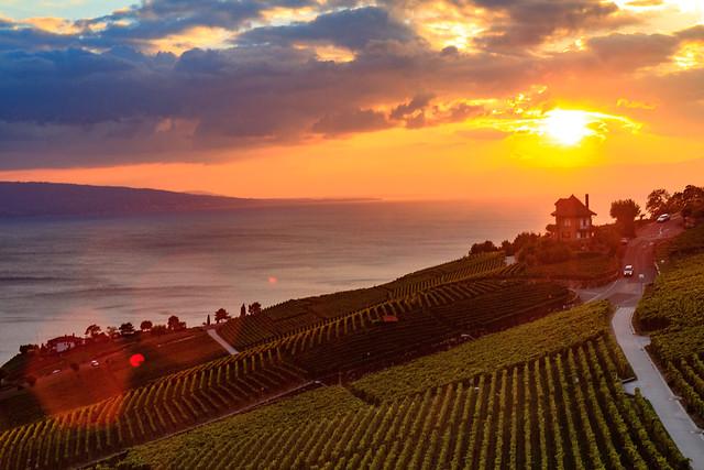 Sunset at Lavaux by Geneva Lake