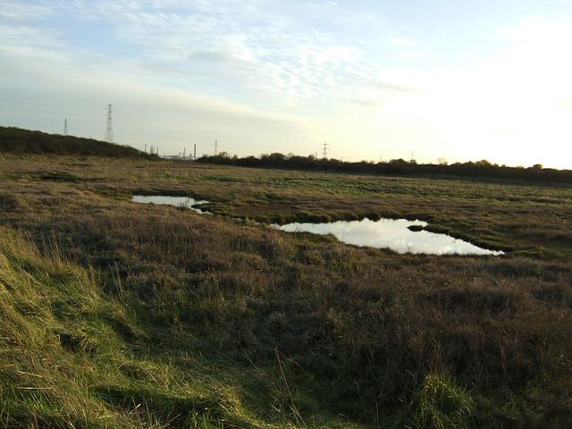 Vange Marshes