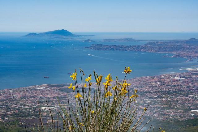 Napoli_IMG_9749