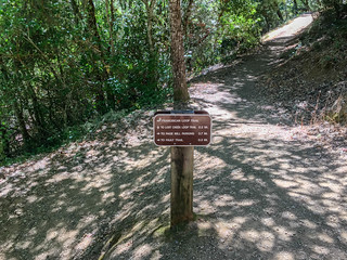 Los Trancos/Franciscan Loop Trail | by Dipika Bhattacharya