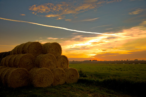 bales round farming straw cows fields cattle dawn sunrise morning lanscape thorntonabbey sunlight northlincolnshire stack canon eos5dmkiv ef2470f28llusm vapourtrails england humberside clouds