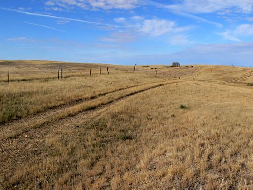 montana preston falloncounty townsite prairie sky