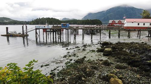 Tofino Dock