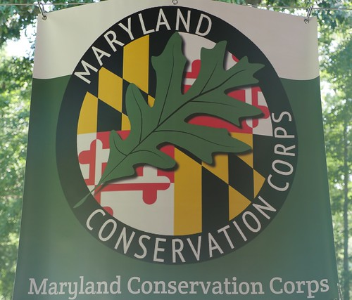 Photo of Maryland Conservation Corps flag