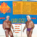 Dustin Rhodes Ric Flair 1993