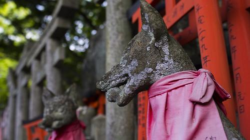 Kioto 2017   by Jaime Gutiérrez (Hola Mundo)