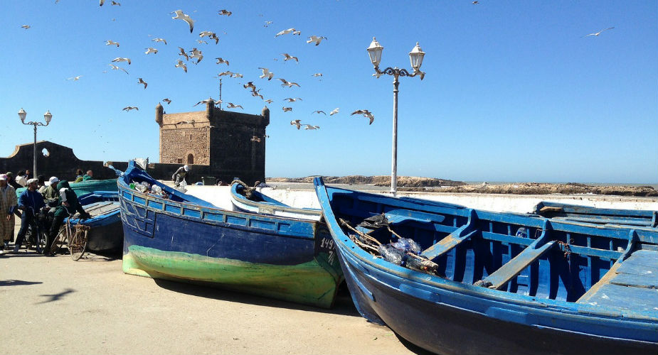 Dagtrip vanuit Marrakech: Essaouira | Mooistestedentrips.nl