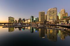Next: Serene City