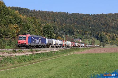 Grünholz , Sulz am Neckar. 26.09.17.