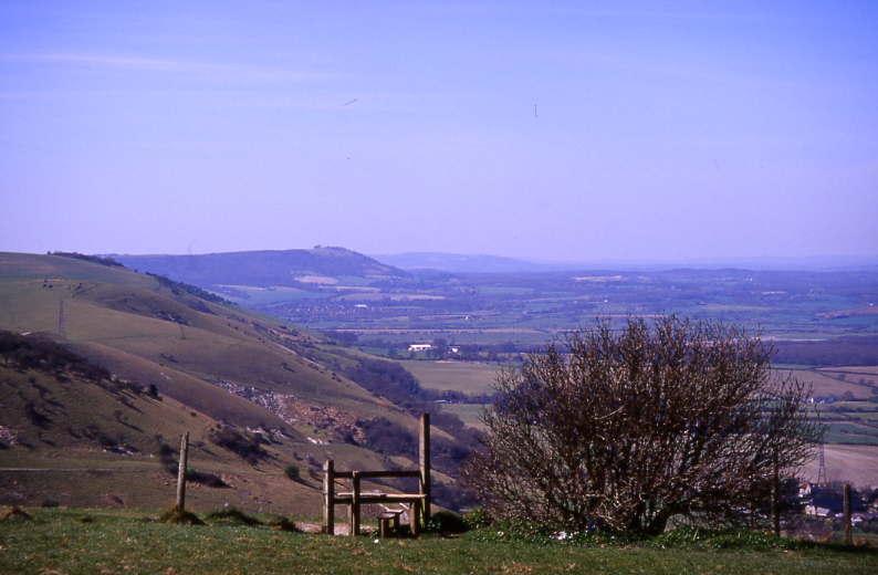 Ridge View 4