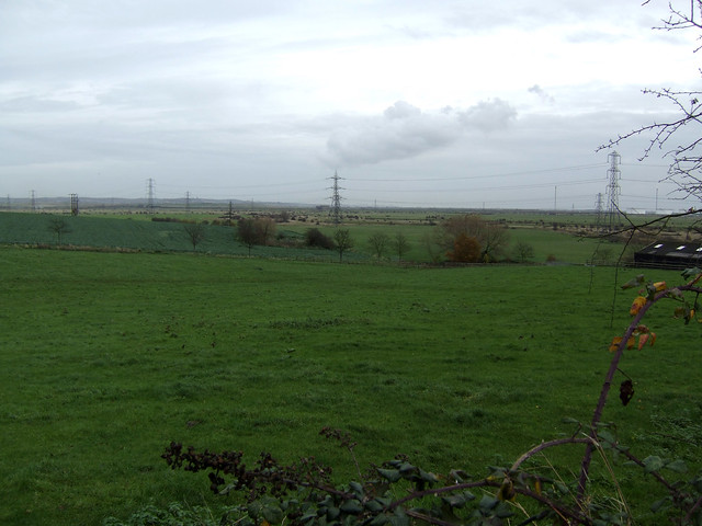 Fobbing Marshes