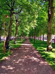 Under träden