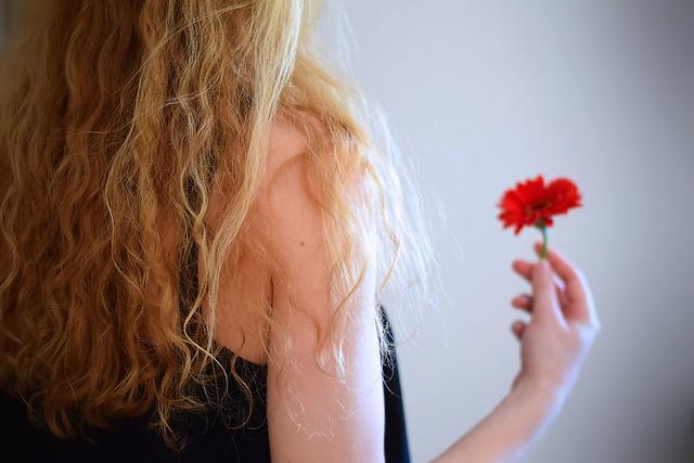 A single flower...