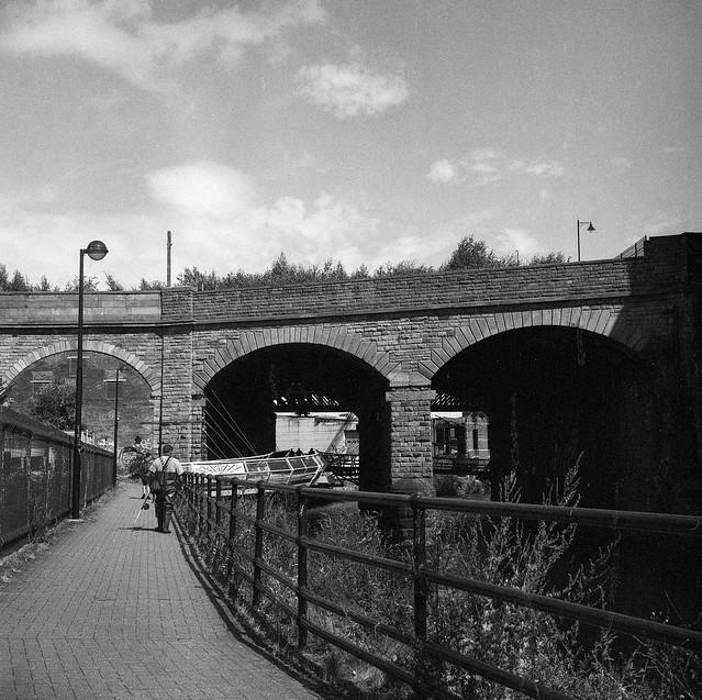 FILM - Cobweb Bridge