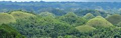 Kegelkarst (Karst tropical en conos) - Chocolate Hills (Bohol, Filipinas) - 02