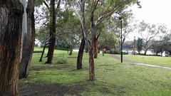 Trees and park at Peninsula Farm