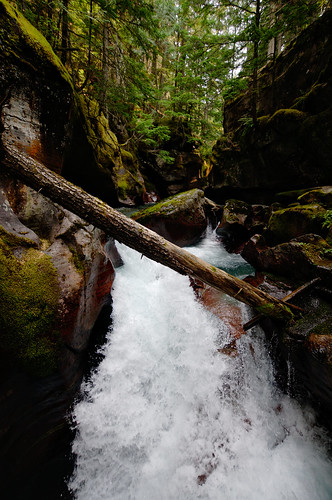 Avalanche Creek | by Alex Hirzel