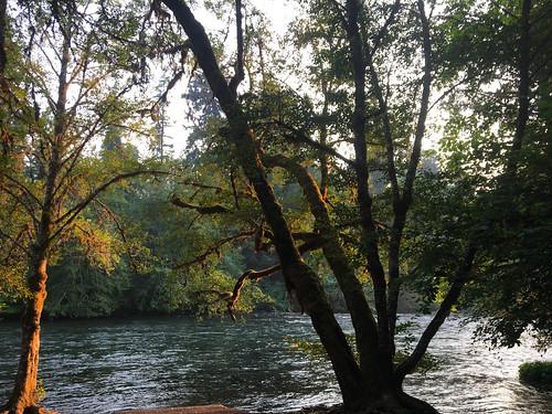 OregonRoadtrip-0348 | by JordanTr