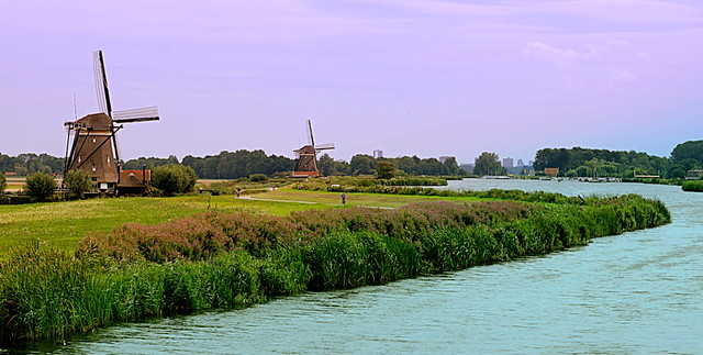 Rotte flows to Rotterdam