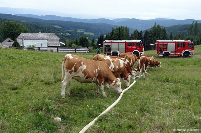 Feuerwehreinsatz auf der Alm - Trinkwassernachschub