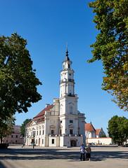 DSC06877 Kaunas Cathedral Basilica