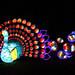 Magical Lantern Festival Birmingham 128 by bigbus3