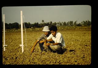 タイの共同研究者とテンションメーター設置風景(スパンブリ農試) | by JIRCAS