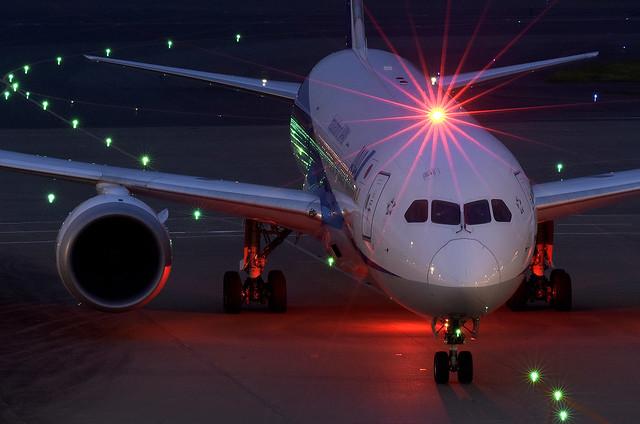 ANA Boeing 787 Dreamliner DSC8733