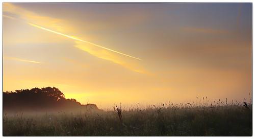 elstead england unitedkingdom gb sunrise landscape