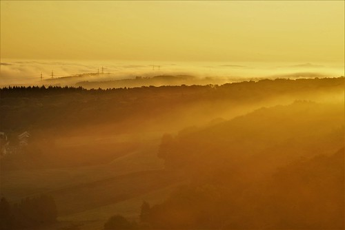 sunrise dawn autumn eifel germany deutschland fall sun fog nebel
