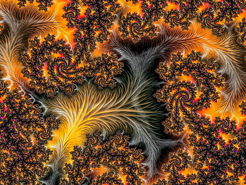 Feather fractal