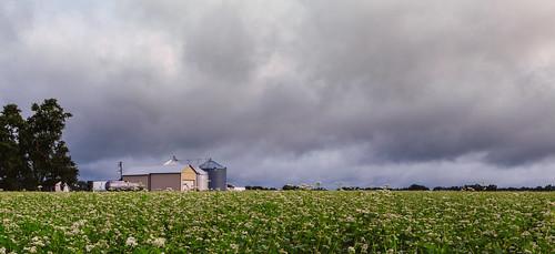 landscape storm cranbury silo nj sky farm field clouds cranburytownship newjersey unitedstates us cloudy