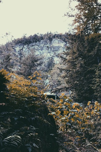 landscape nature newengland newhampshire polarcaves mountains trees iphone iphone7plus apple 365 365project vsco vscogood film filmlook photography summer emilymoy emilymoyphotography