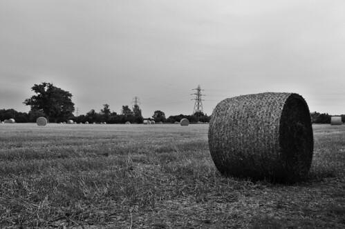 pylon ansty blackandwhite bw landscape