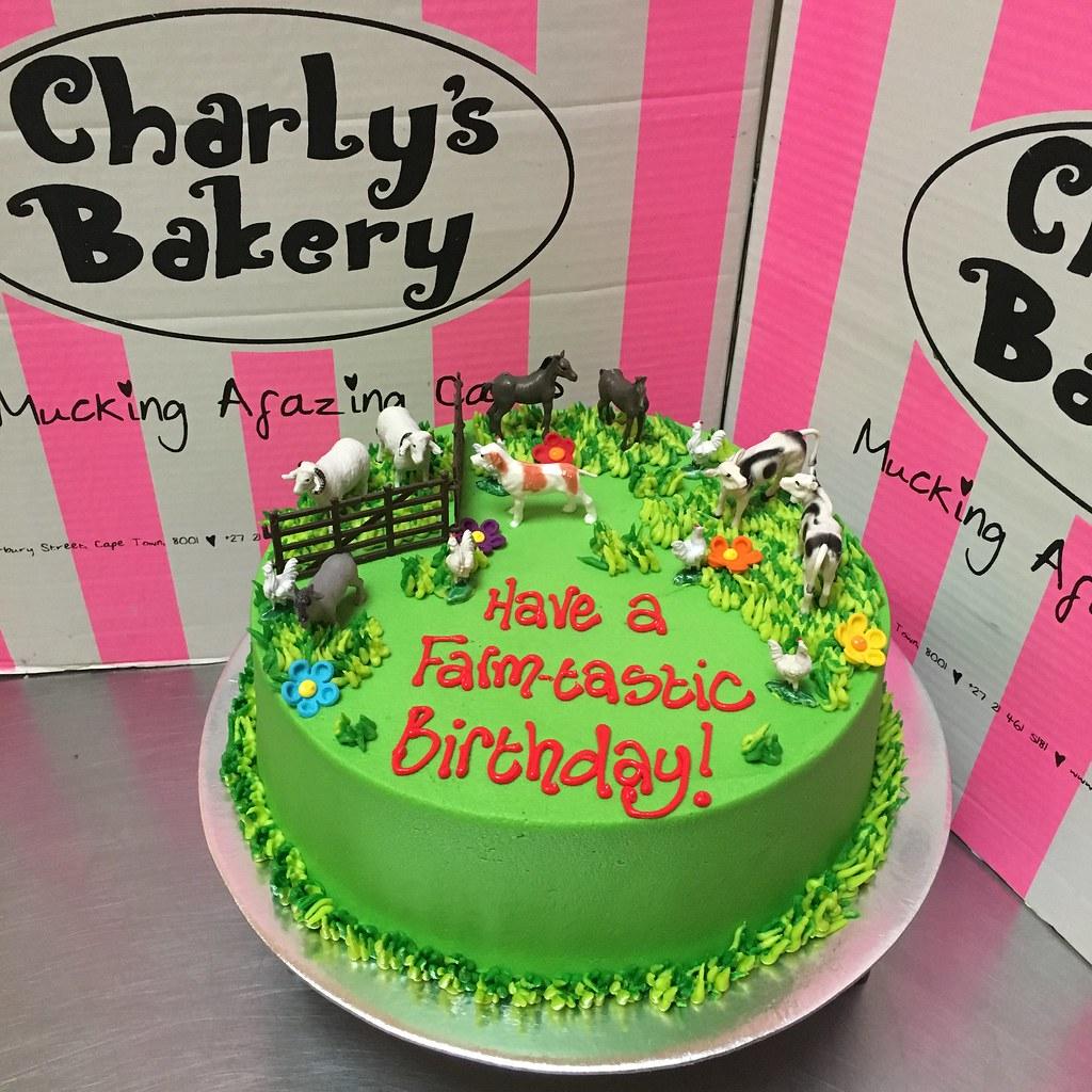 Farm themed single tier birthday cake with non-edible plas… | Flickr
