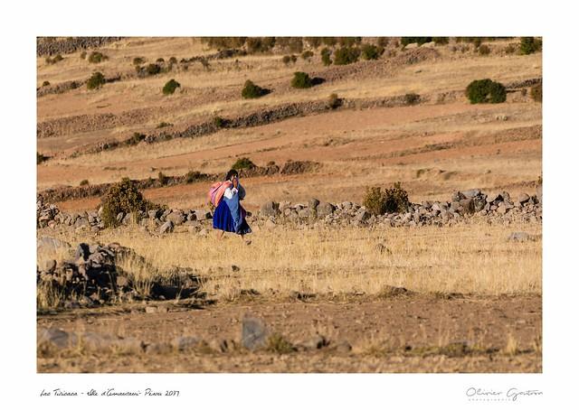 ile d'Amentani lac Titicaca Pérou 2017