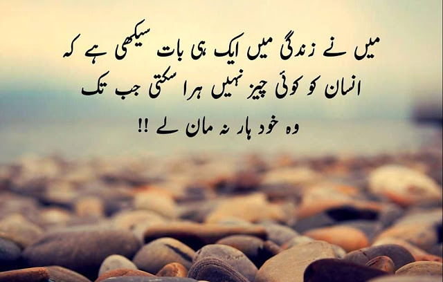 urdu quotes success struggle (1) | malik asif | Flickr