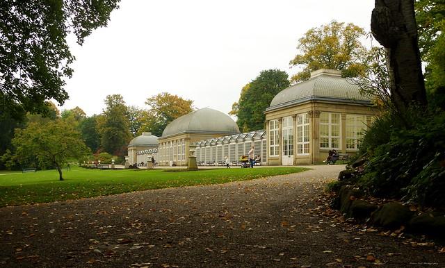 botanical gardens autumn 2017