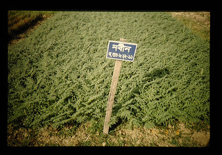 Agriculture And Agricultural Research Institutes In Bangladesh = バングラデシュの農業と農業研究機関