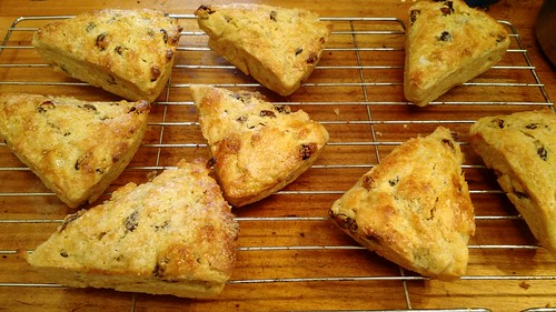 Raisin scones | by Lisa G Richards