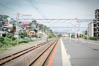 4Z3A9400.jpg | by Toshiya HASEGAWA