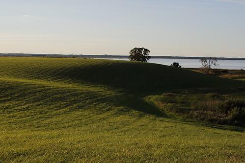 kulle hill tree träd sjö lake field fält shadows skuggor hornborgarsjön landet rural landscape landskap rolling hills rollinghills countryside eos7dmkii