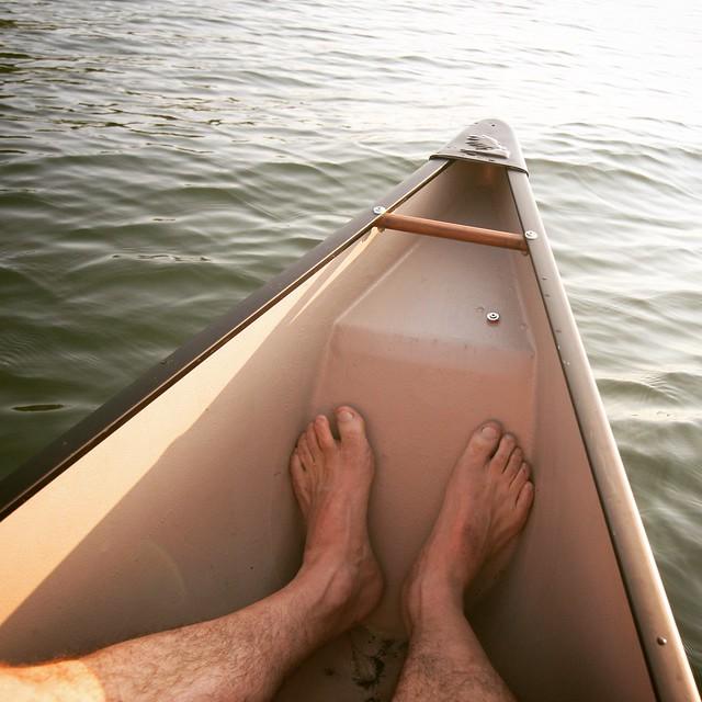 Happy Feet 2017